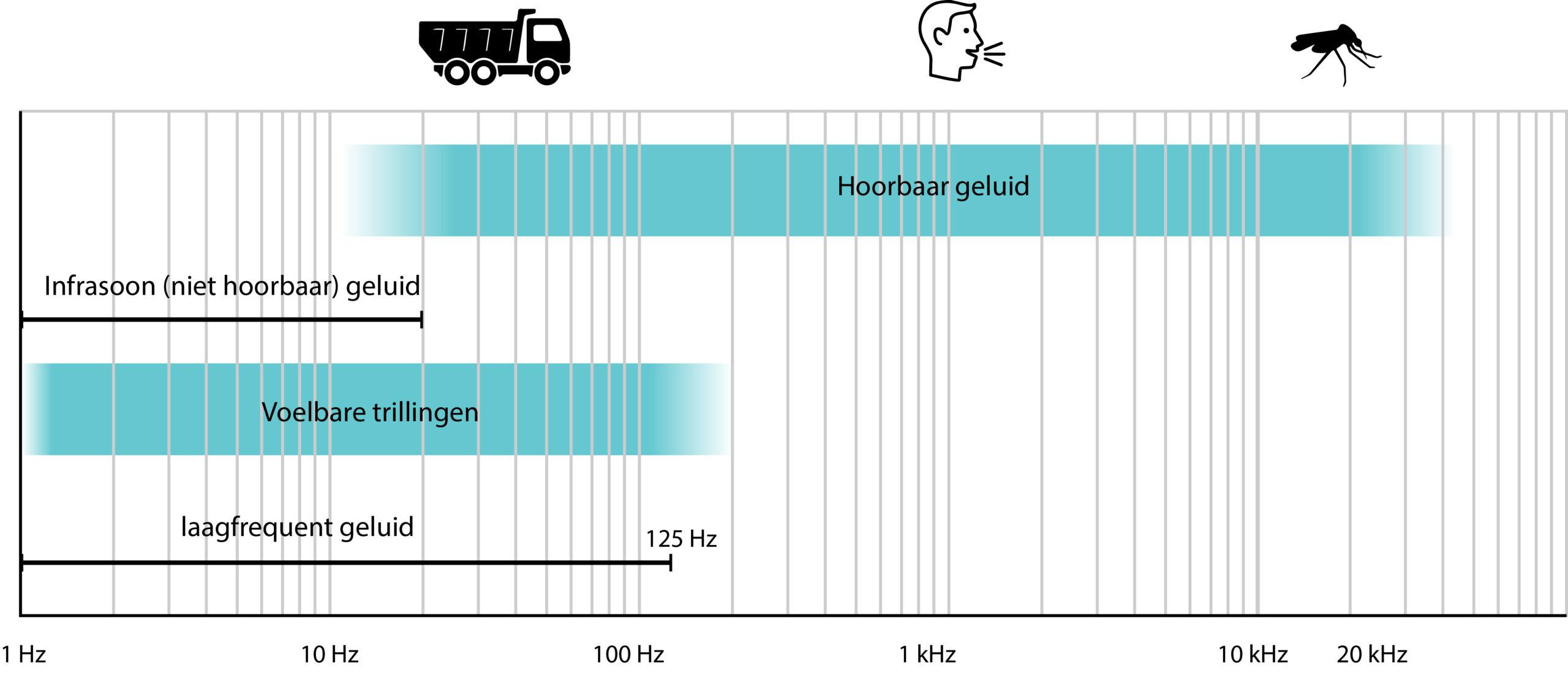 Frequentiespectrum trillingen en geluid, de frequentiegebieden van infrageluid, laagfrequent geluid, hoorbaar geluid en voelbare trillingen